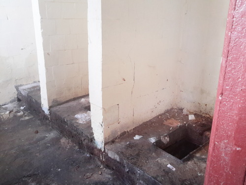Женские дырки в туалетах